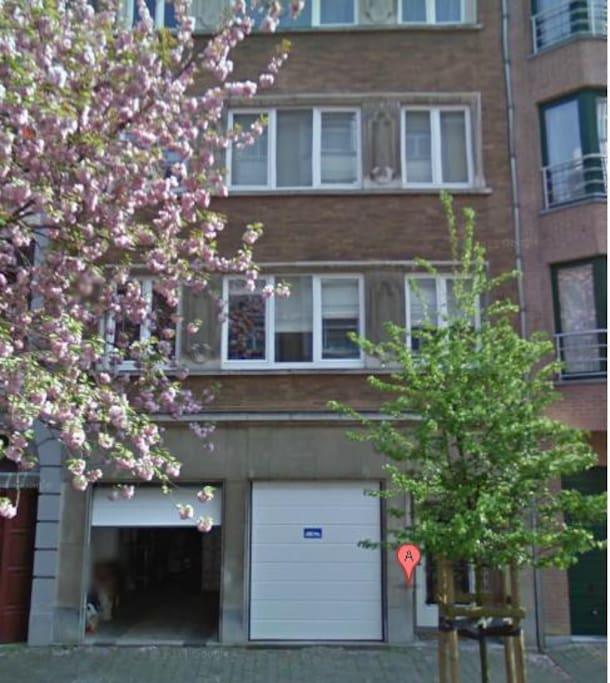 Garage + First floor apt