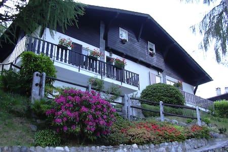Villa con piscina - Lago Maggiore - Trarego Viggiona - 別荘