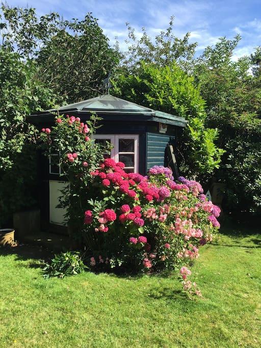 Hinterm Haus befindet sich ein wunderschöner, eingewachsener Garten. Falls zum ultimativem Entspannungsmodus auch Gartenarbeit gehört - gar kein Problem.