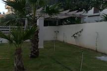 Τμήμα του κήπου μας: φοίνικες και νεοκλασικο κιόσκι.