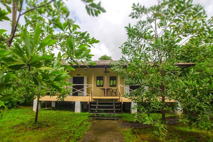 JenJon Holiday Resort, Phansad, Alibaug