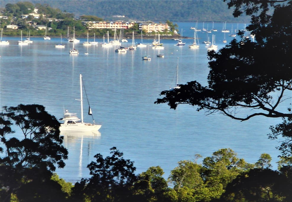 View of Airlie Bay