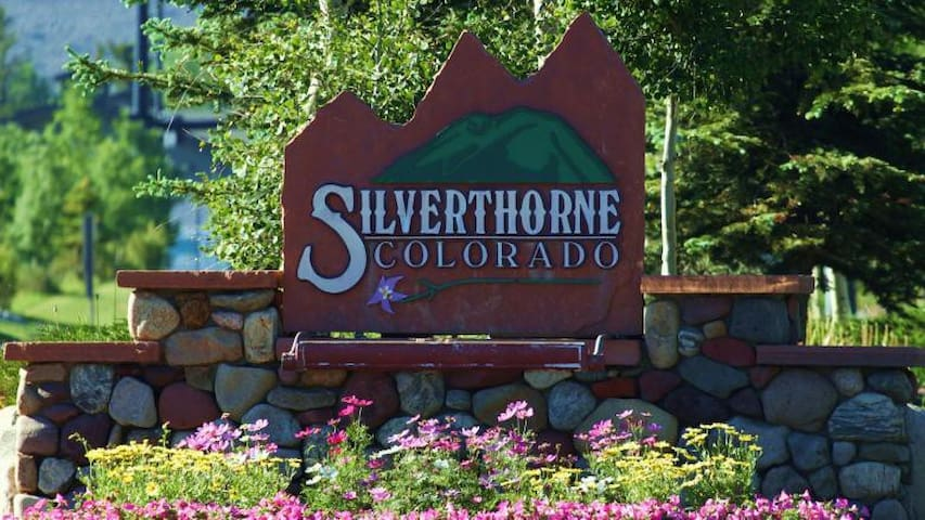 Private Studio suite for two in silverthorne CO - Silverthorne - Kondominium