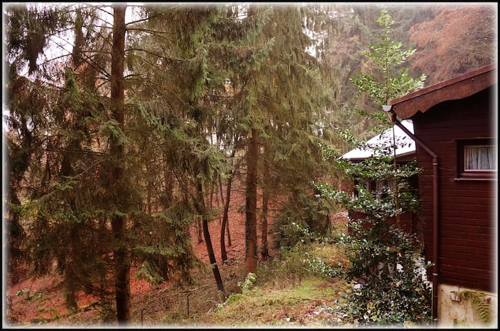freistehendes großes Waldhaus in der Nähe vom Ring - Langenfeld - Domek parterowy