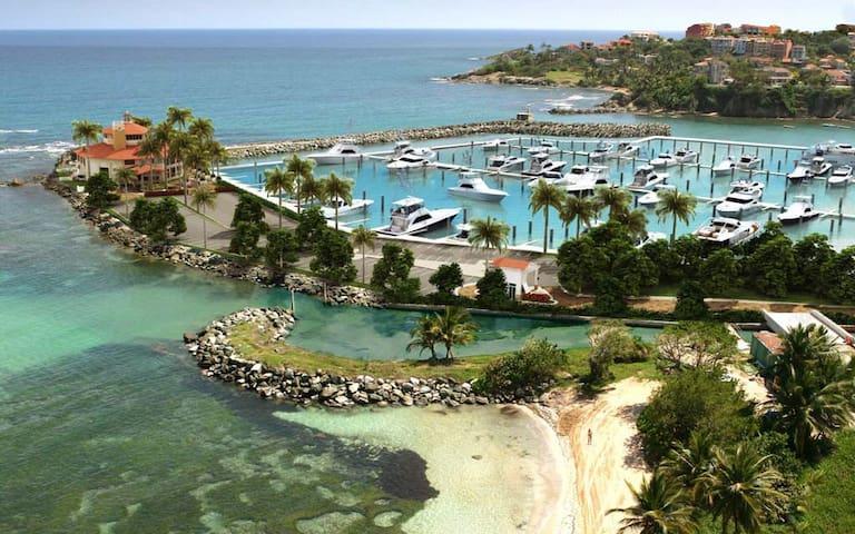 Beach  villa Resort type *Very walkable*