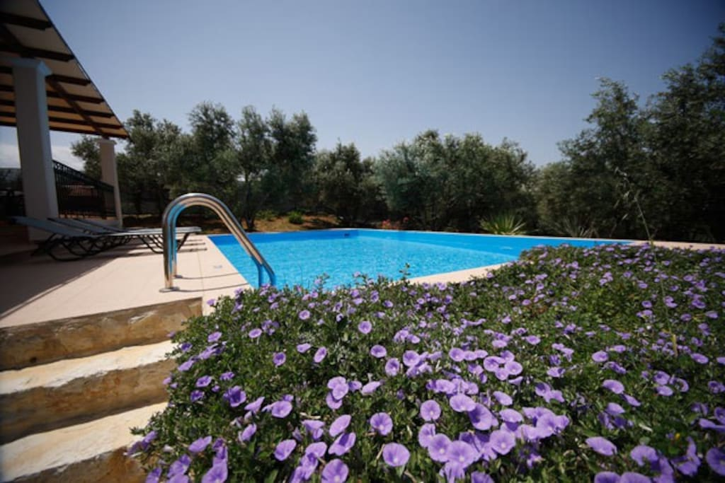 Villas M and V in Galatas, Chania