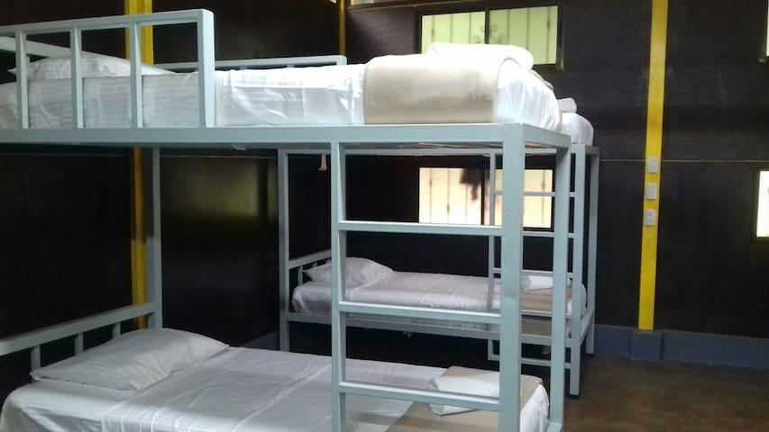 Bed in shared room - La Abundanci - Studentrum