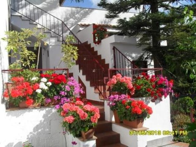casavacanzeinsicilia-Etna-Taormina - Piedimonte Etneo - Hus