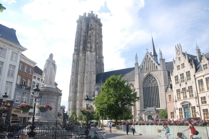 Mechelen city center things to do