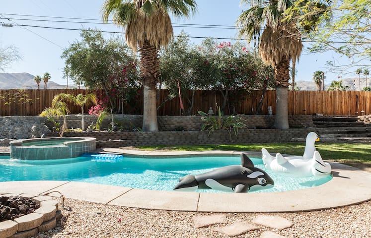 Coachella Dream House in Cat City