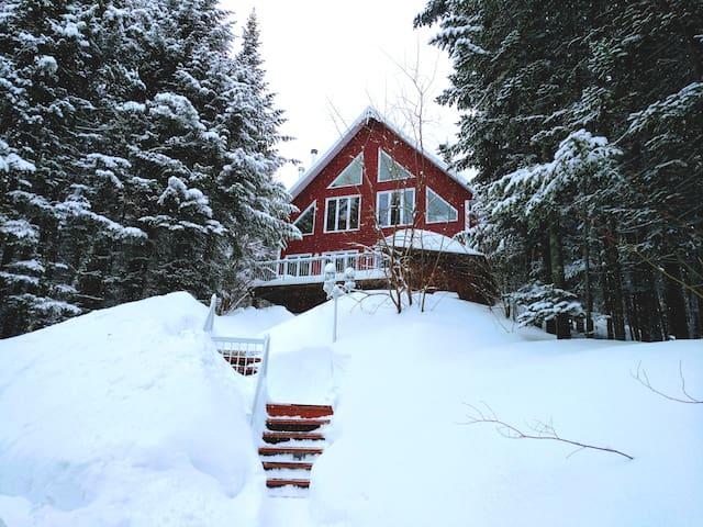 Suite privée confort. La nature à 20min de Québec!