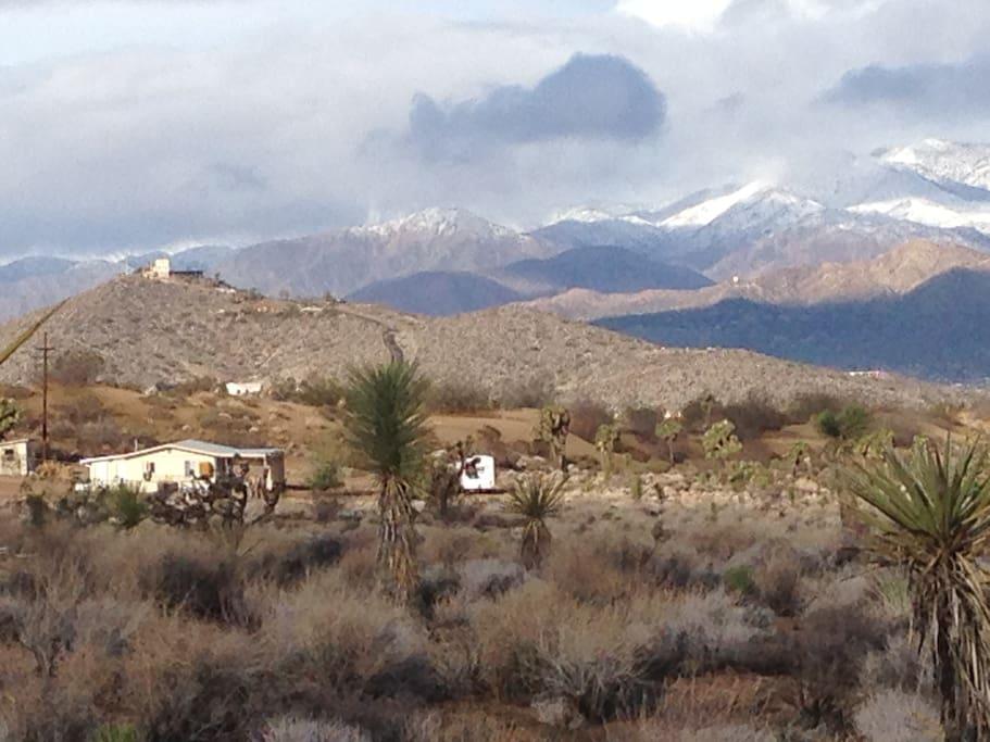 Desert Dharma Cabin