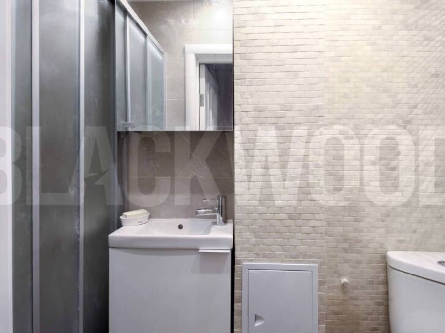 Bathroom: wet room, basin and toilet with bidet function, mosaics on the walls