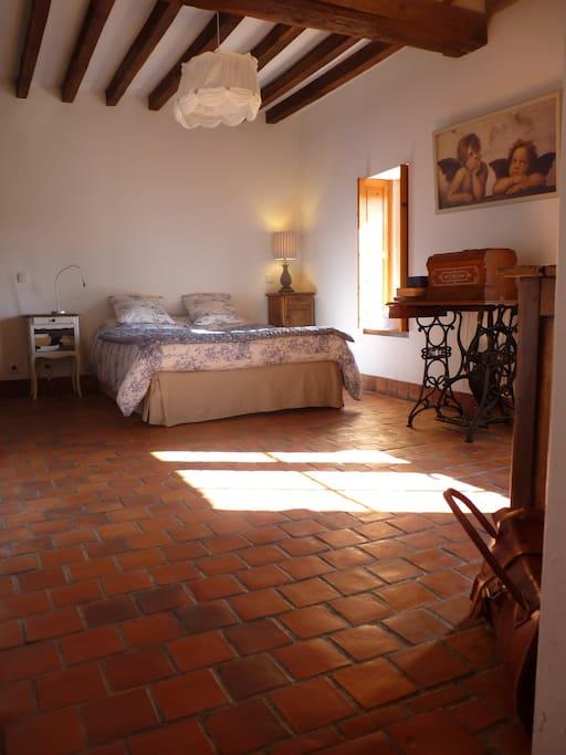chambre spacieuse et orientée au sud, accès direct au jardin