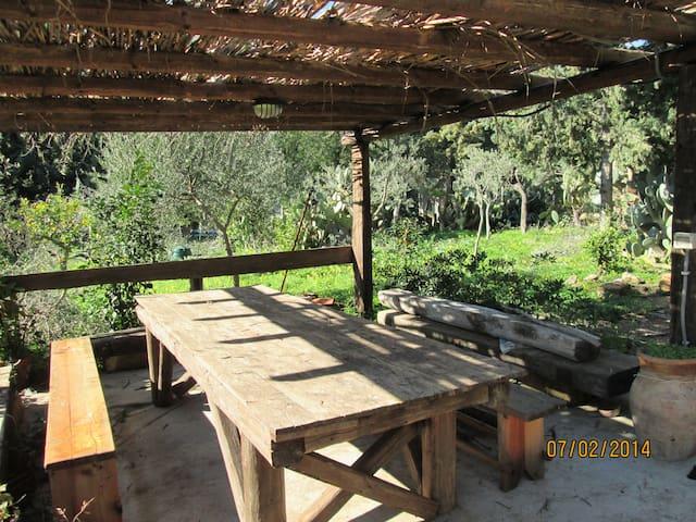 casetta tipica di campagna - Altavilla Milicia - House