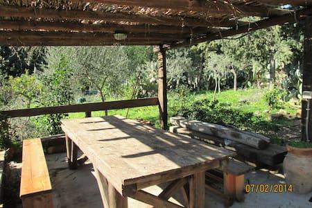 casetta tipica di campagna - Altavilla Milicia