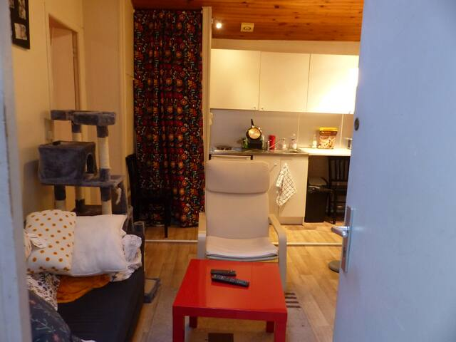 Petit appartement en plein centre-ville - Toulouse - Apartment