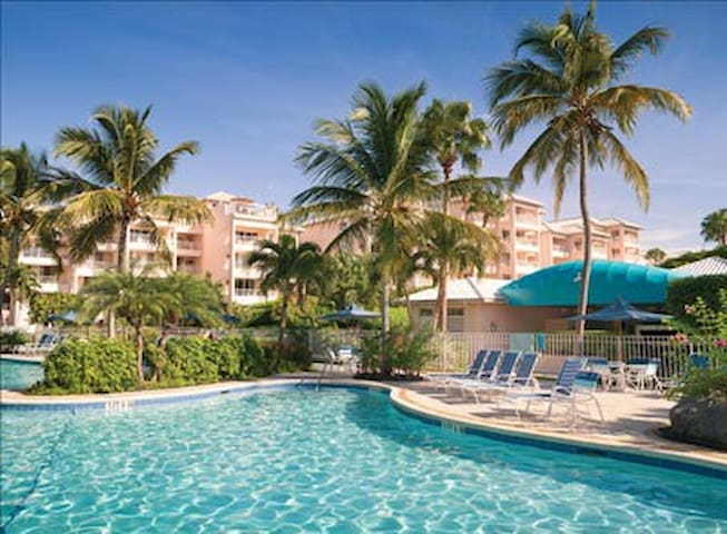 Experience Exotic St Thomas Apartments For Rent In East End St Thomas U S Virgin Islands