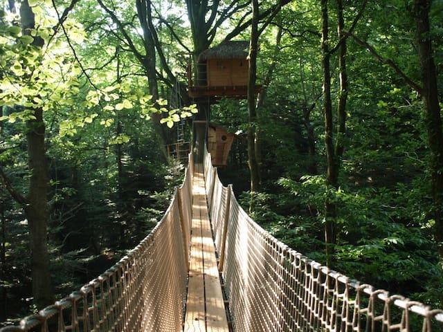 Cabane dans les arbres en Bretagne - Cléder - Treehouse