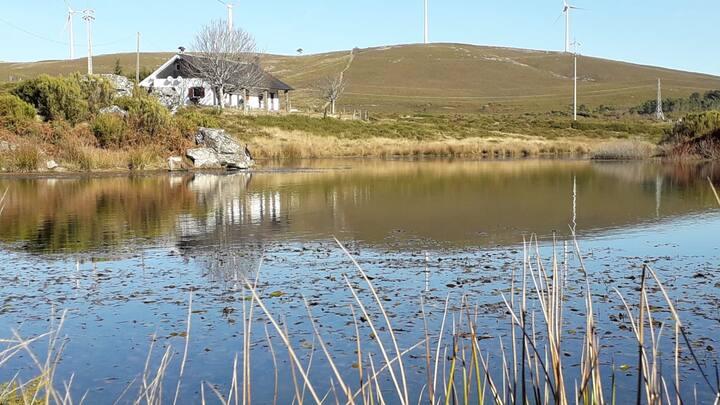Lago da Garça