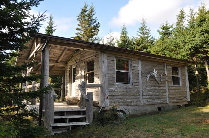 """Hayden Lake """"Guesthouse"""" romantic spot,free nature"""