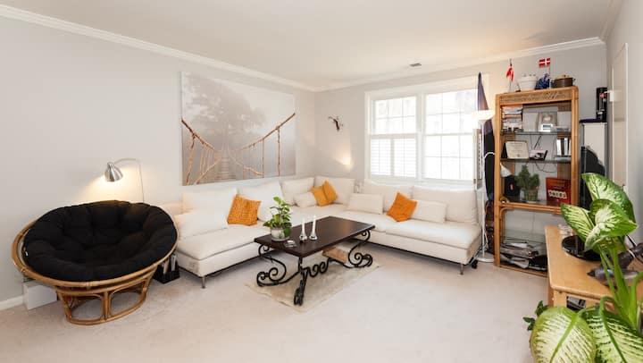 Lovely, bright apartment in Arlington