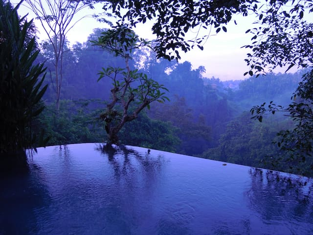Villa Beji 2BR  with  infinity pool - Ubud - Huis