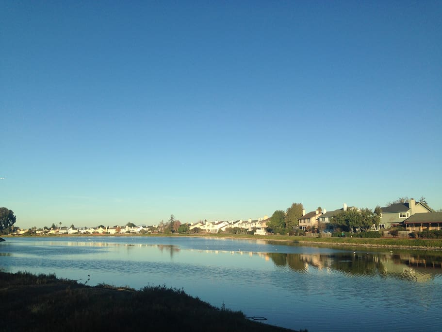 A short walk to the Foster City Lagoon