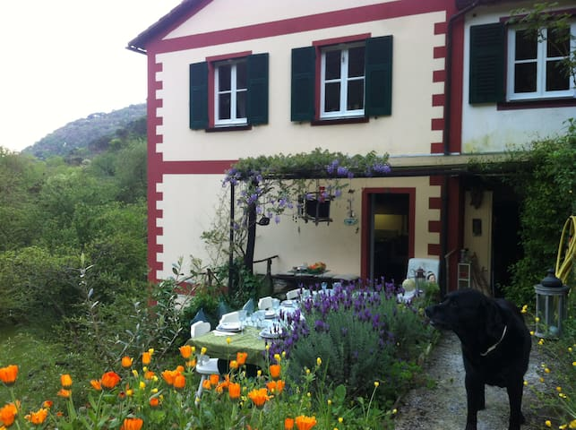 Casa Vanda - Rapallo - House