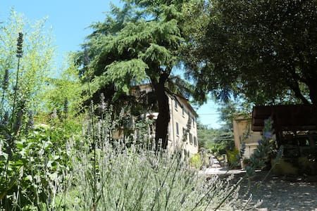 B&B Gabri - Stanza Grano - Cortona - Bed & Breakfast