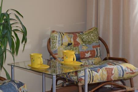 Freshly furnished apartament in Riga - Riika