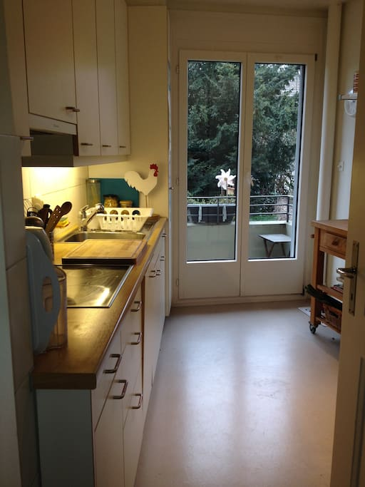 Kitchen with view on the back garden.