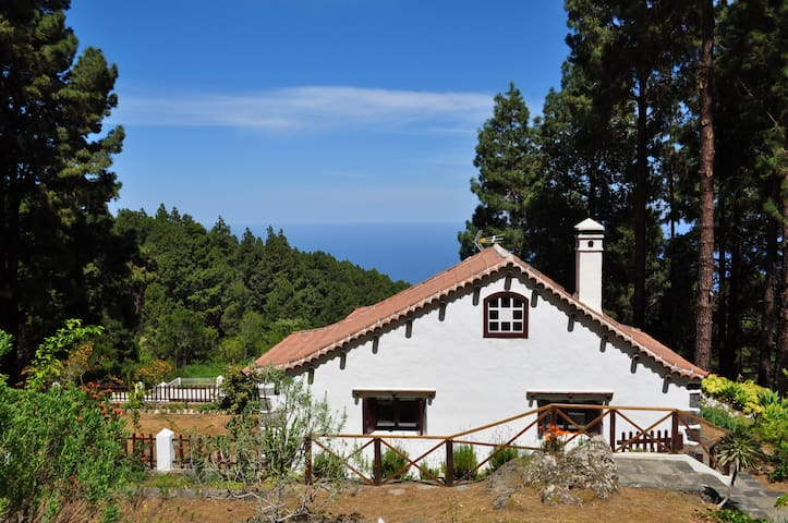 Tenerife cottage ideal for Hiking and Stargazing - Icod de los Vinos - Cabin