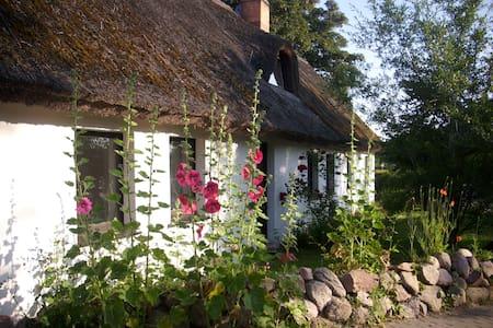 Ferienwohnung im alten Reetdachhaus auf Usedom - Benz - Wohnung