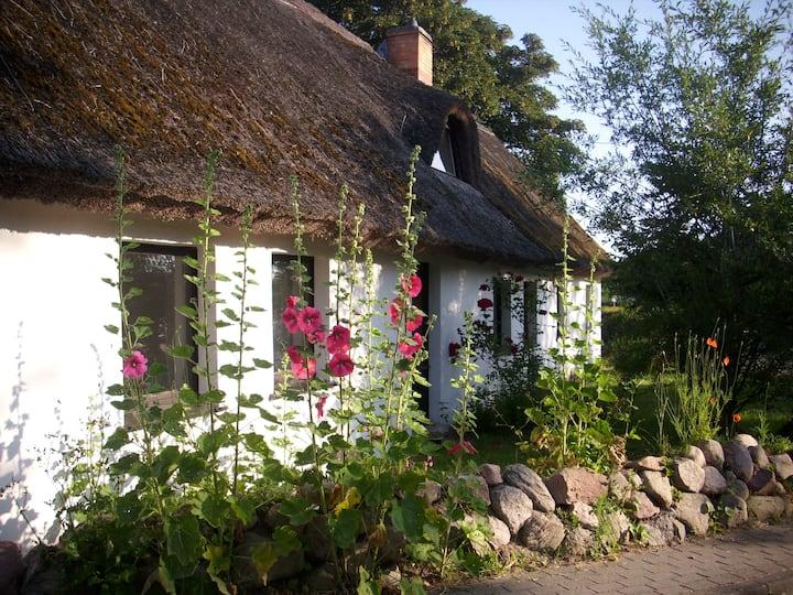 Ferienwohnung im alten Reetdachhaus auf Usedom