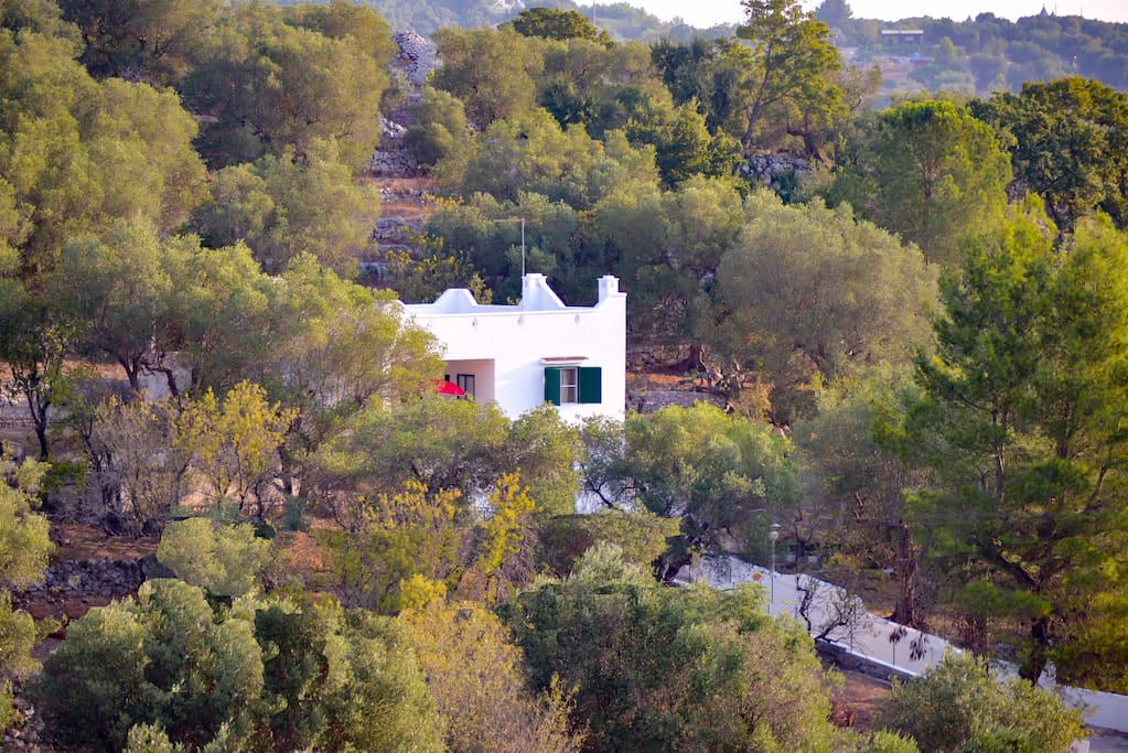 Nestled in the gentle hills of Olives and Almonds