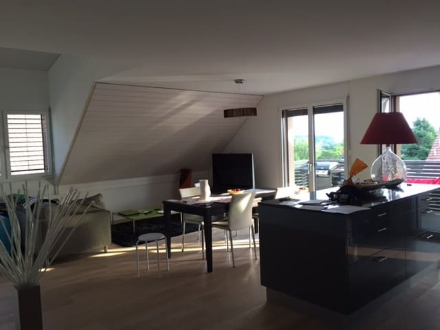 Modern apartment ideally located 15 min from ZH - Obfelden - Huoneisto