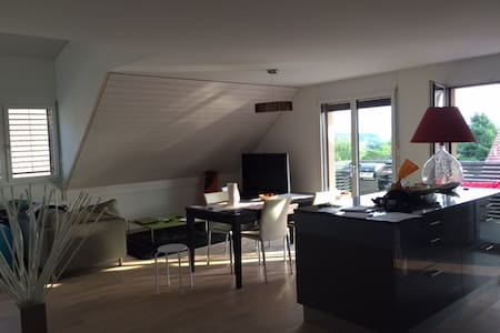 Modern apartment ideally located 15 min from ZH - Obfelden - 公寓