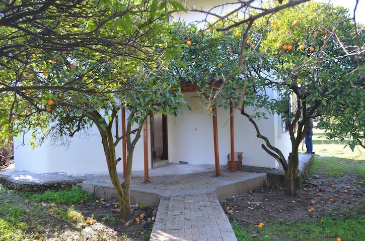 Haus  mit Orangengarten & Berg - Bahtılı