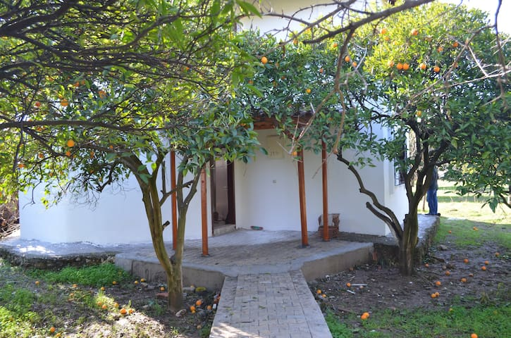 Haus  mit Orangengarten & Berg - Bahtılı - House