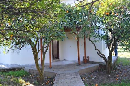 Haus  mit Orangengarten & Berg - Bahtılı - Casa