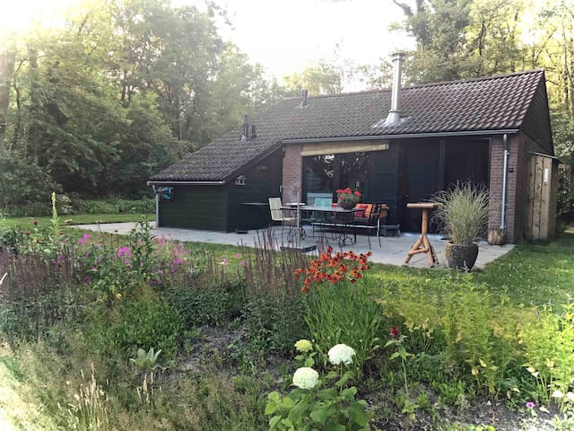 't Bosuiltje: het fijnste boshuisje van Drenthe