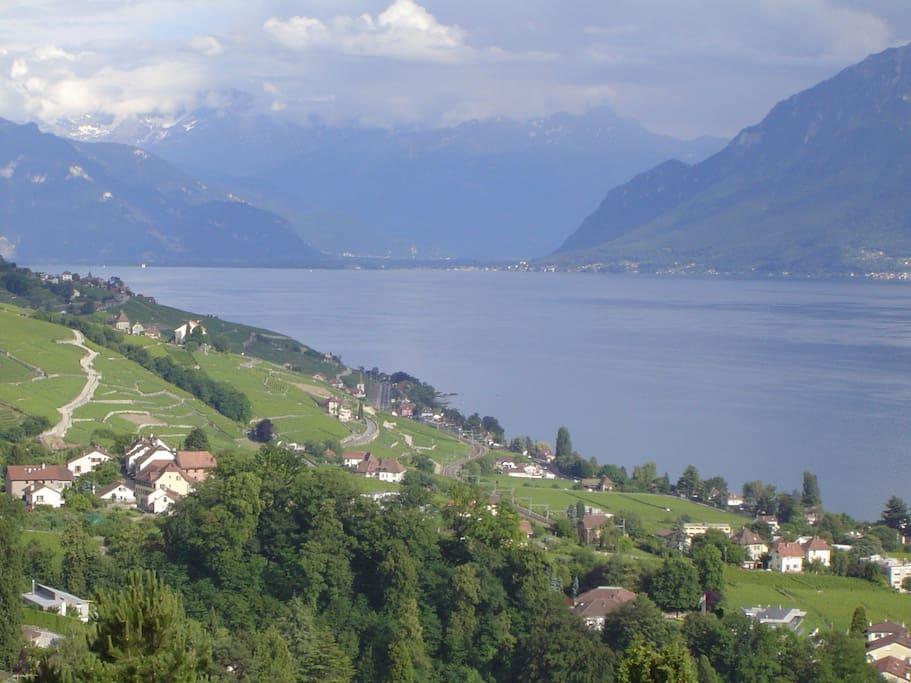 Chambre d 39 h tes vue imprenable maisons louer lutry for Chambre d hote suisse