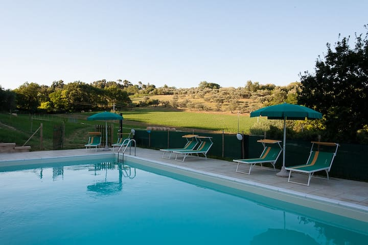 Swimming pool outside.