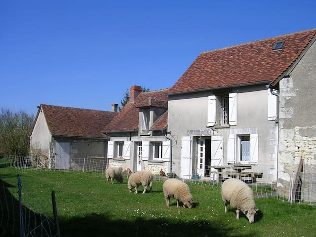 Typical stay in Loire Valley - Cussay - Dům