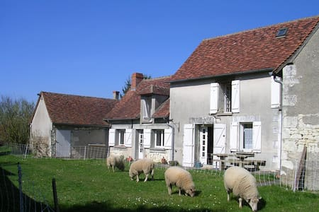 Typical stay in Loire Valley - Cussay - Talo