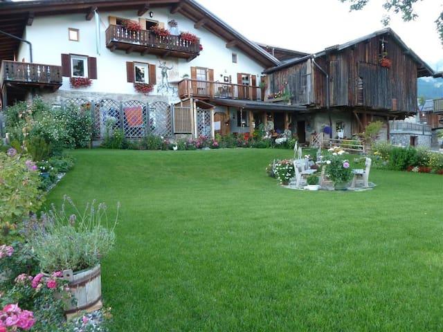 Vacanze sulle dolomiti Val di Fassa - Italiana - Apartment