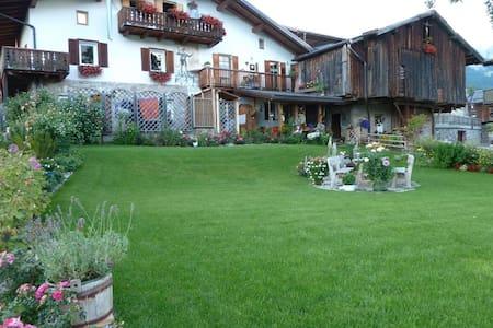 Vacanze sulle dolomiti Val di Fassa - Italiana