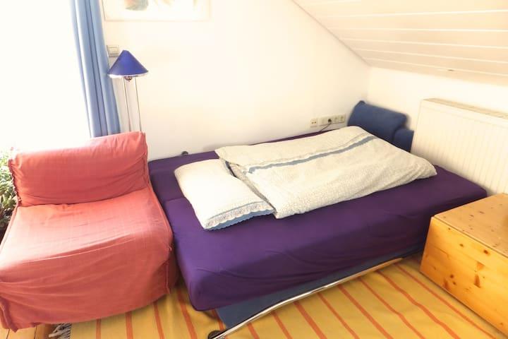 Eine Schlafcouch, für einen Erwachsenen oder 2 Kinder, gegenüber im gleichen Raum.