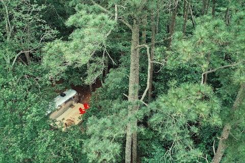 Ultimate Airstream Retreat Farm Stay